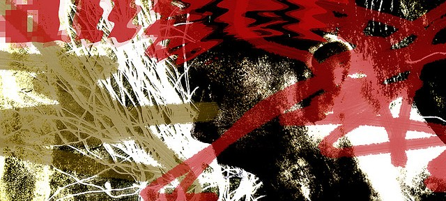 Shitstorms: Die Macht des digitalen Mobs